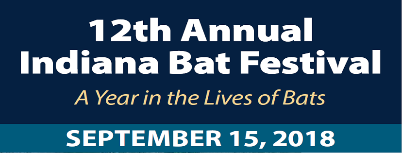 bat festival.png