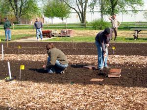 public-service-garden.jpg