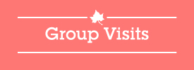 Group Visits