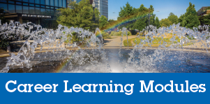 Career Learning Modules