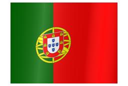portugal-flag-waving-icon-256.png