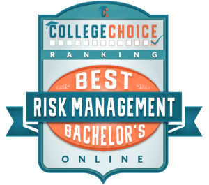 best online risk management program