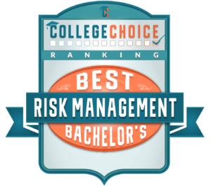best risk management program