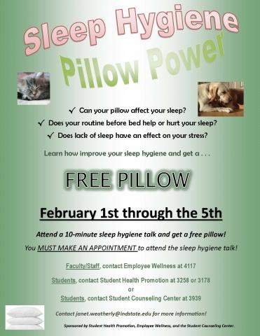 Pillow Power flyer