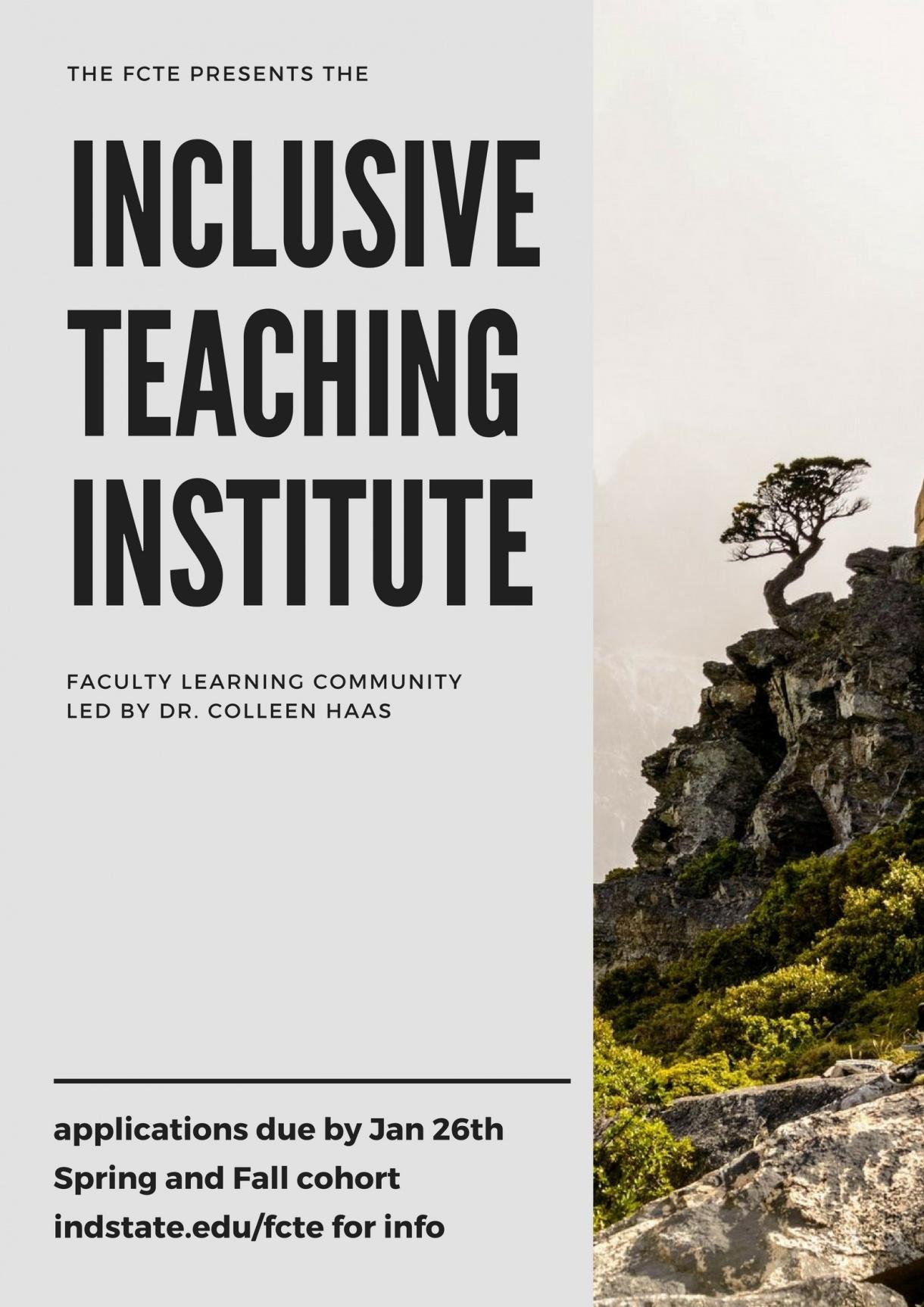 Inclusive Teaching Institute