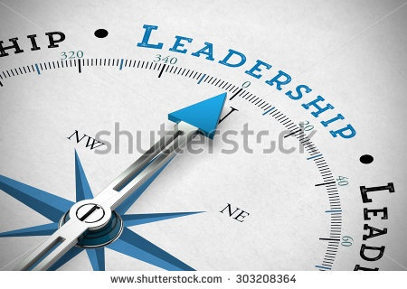 Faculty Fellows, teaching, FCTE, leadership