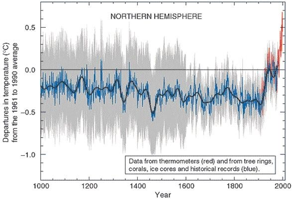 "This is the Mann, Bradley, and Hughes ""Hockeystick"" Curve showing temperatuers over the past 1000 years including the recent warming over the last century (Mann et al. 1999)."