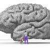 GH 301: Minds, Machines, & Cognition